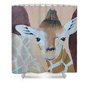 Giraffe Baby Shower Curtain