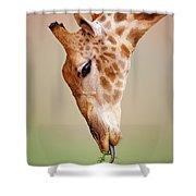 Giraffe Eating Close-up Shower Curtain by Johan Swanepoel