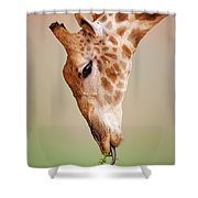 Giraffe Eating Close-up Shower Curtain