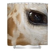 Giraffe Eye Shower Curtain