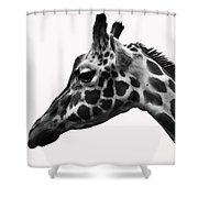 Giraffe Head Shot Shower Curtain