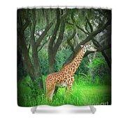 Giraffe In Florida Shower Curtain