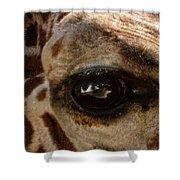 Giraffe Look Into My Eye Shower Curtain