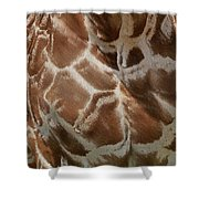 Giraffe Patterns Shower Curtain