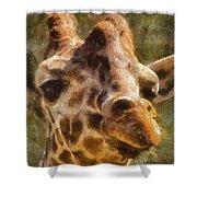 Giraffe Photo Art 01 Shower Curtain