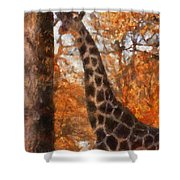 Giraffe Photo Art 03 Shower Curtain