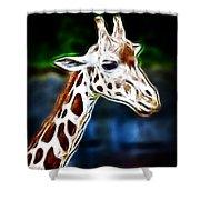 Giraffe Zoo Art Shower Curtain