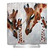 Giraffes - Oh Baby Shower Curtain