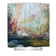 Girl In A White Dress Shower Curtain