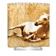 Gitty Up Shower Curtain