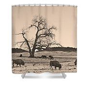 Give Me A Home Where The Buffalo Roam Sepia Shower Curtain