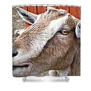 Give Us A Kiss Shower Curtain