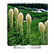 Glacier Beargrass Swiftcurrent Pass Shower Curtain