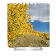 Glacier Fall Color Ridge Shower Curtain