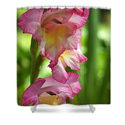 Glad Beauty Shower Curtain