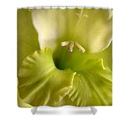 Glad To Be Green Shower Curtain