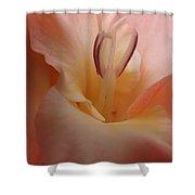 Gladiola Stamen Shower Curtain