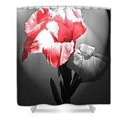Gladiola With Heart Shower Curtain