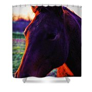 Glamour Shot Shower Curtain
