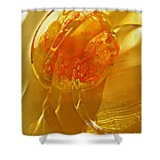 Glass Abstract 581 Shower Curtain