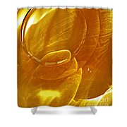 Glass Abstract 639 Shower Curtain