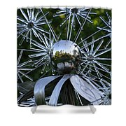 Glass Art Shower Curtain