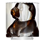 Glass Bear Shower Curtain