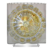 Glass Door Knob Shower Curtain