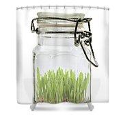 Glass Jar Shower Curtain