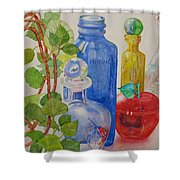 Glass Reunion Shower Curtain