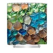 Glass Seashell Shower Curtain