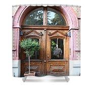Glazed Door Shower Curtain