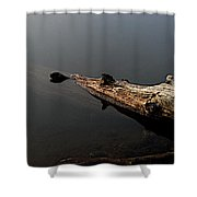 Glen's Log Shower Curtain