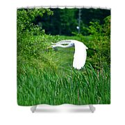 Gliding Egret Shower Curtain