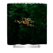 Gliding Frog In Flights Shower Curtain