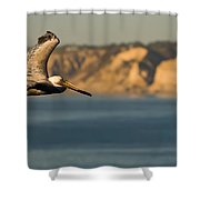 Gliding Pelican Shower Curtain