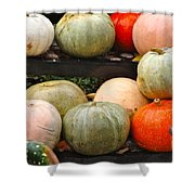 Glistening Gourds Shower Curtain
