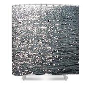 Glittering Shower Curtain