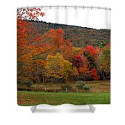Glorious Fall Leaves Shower Curtain