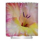 Glorious Gladiola Flower Shower Curtain