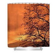 Glorious Silhouettes 1 Shower Curtain