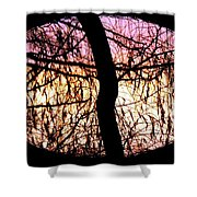 Glorious Silhouettes 3 Shower Curtain