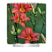 Glory In Unity Shower Curtain