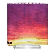 Glory Shower Curtain