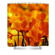 Glory Of Poppies Shower Curtain