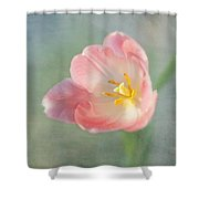 Glow Within-pink Tulip Shower Curtain