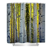 Glowing Aspens Shower Curtain