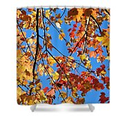Glowing Autumn Shower Curtain