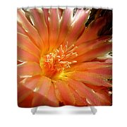 Glowing Cactus Flower Shower Curtain