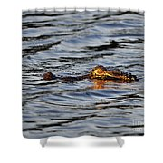 Glowing Gator Shower Curtain